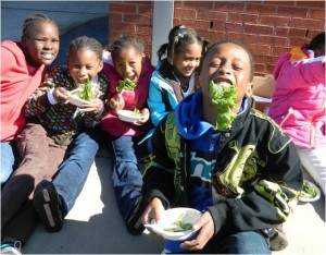 Group of children eating fresh lettuce