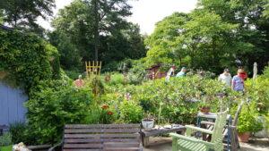 Cover photo for 2018 Extension Master Gardener Course