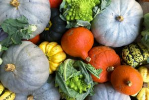 assorted fall vegetables