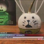 WCCB TV's Wilson's World - Somethin' Pumpkin Festival