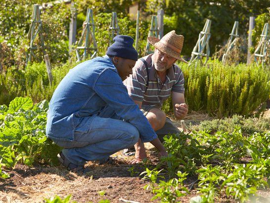 Men Talking by Garden